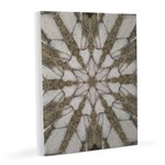 Fractured Ice Star 8x10 Canvas Print