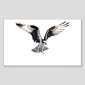 Hunting osprey Rectangle Sticker