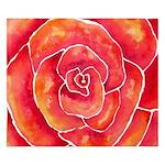 Red-Orange Rose Watercolor King Duvet Cover