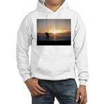 Playing Golf At Sunset Hooded Sweatshirt