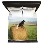Cat and Dog on Hay Bale King Duvet