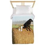 Cat and Dog on Hay Bale Twin Duvet