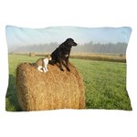 Cat and Dog on Hay Bale Pillow Case