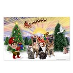 TakeOff3-2dogs-2cats Postcards (Package of 8)