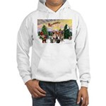 TakeOff3-2dogs-2cats Hooded Sweatshirt
