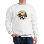 TakeOff3-2dogs-2cats Sweatshirt