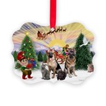 TakeOff3-2dogs-2cats Picture Ornament