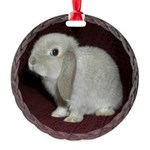 Little Lop Bunny Round Ornament