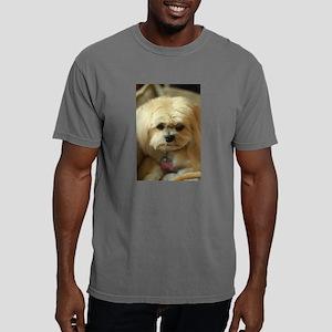 indoor dogs Mens Comfort Colors Shirt