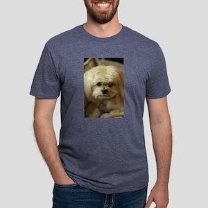 indoor dogs Mens Tri-blend T-Shirt