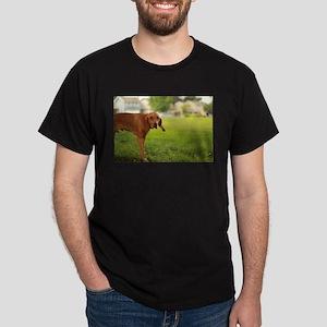 Viszla dog at park in san Jose T-Shirt