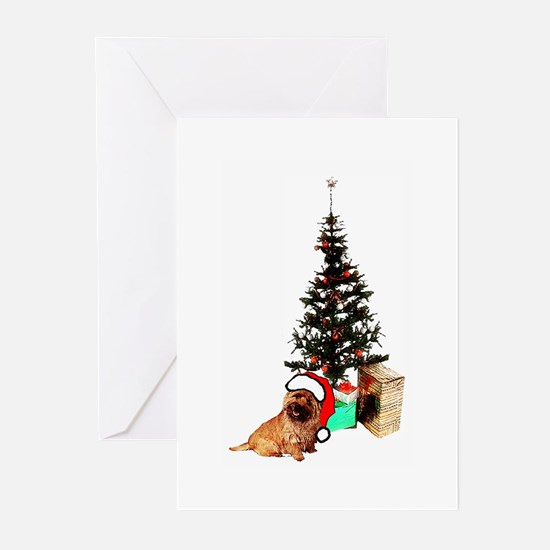 cairn christmas Greeting Cards