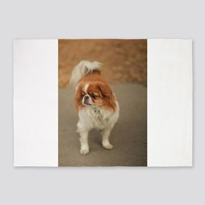 Japanese chin on path at park in sa 5'x7'Area Rug