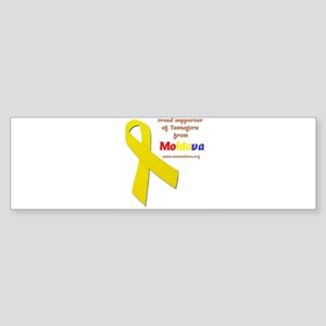 Support teenagers from Moldova! Sticker (Bumper)