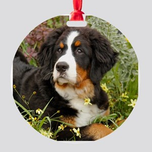 Tory BMD 2012 Round Ornament
