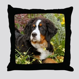 Tory BMD 2012 Throw Pillow