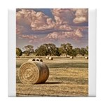 Southfork Ranch DSC_6276 Tile Coaster