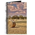 Southfork Ranch DSC_6276 Journal