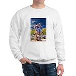Cowboy Up! DSC_6165 Sweatshirt