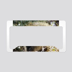 Prickly Subject License Plate Holder