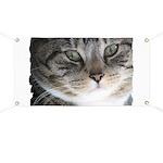Cat Close-up Banner