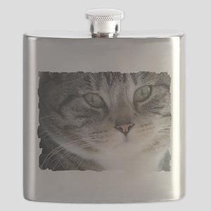 Cat Close-up Flask