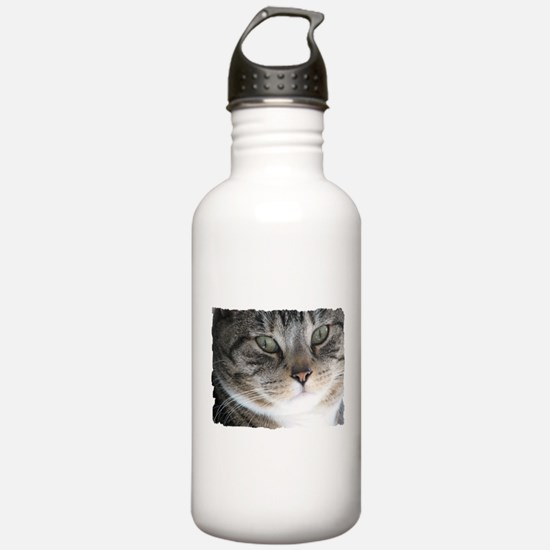 Cat Close-up Water Bottle