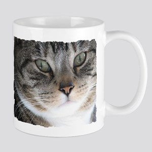 Cat Close-up Mug