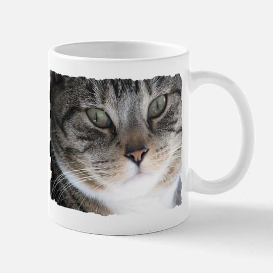 Cat Close-up Mug