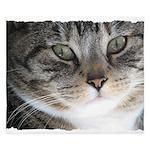 Cat Close-up King Duvet