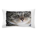 Cat Close-up Pillow Case