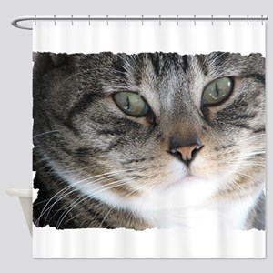 Cat Close-up Shower Curtain