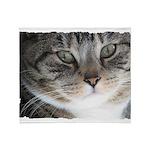 Cat Close-up Throw Blanket