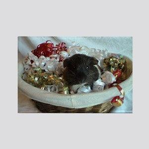 baby cavy Rectangle Magnet