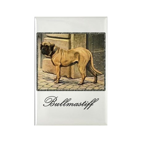 Bullmastiff Illustration Rectangle Magnet
