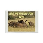 Oh dear, Oh Deer Rectangle Magnet (10 pack)