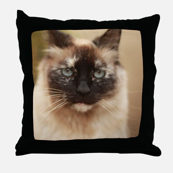 Funny Tortie Throw Pillow