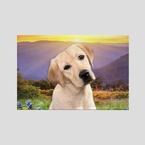 Labrador Meadow Rectangle Magnet