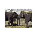 Elephant Eyes Woodcut 5'x7'Area Rug