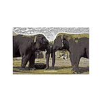 Elephant Eyes Woodcut 3'x5' Area Rug