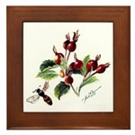 Rose Rosehips and Bee Framed Tile