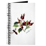 Rose Rosehips and Bee Journal