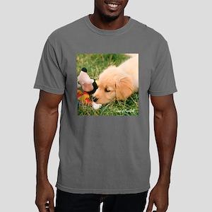 darcytoybox Mens Comfort Colors Shirt