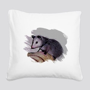 Baby Possum Square Canvas Pillow