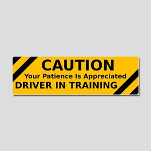 CAUTION: Driver In Training Car Magnet