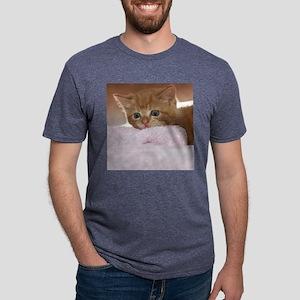 Ginger kitten for frisbee.j Mens Tri-blend T-Shirt