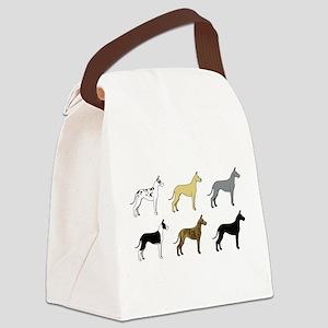 Colorful Dane 1 Canvas Lunch Bag