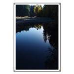 River Reflections Banner