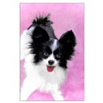 Papillon (White and Black) Large Poster