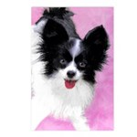 Papillon (White and Black Postcards (Package of 8)